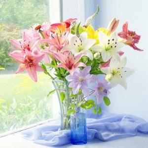 магия цветов о чем могут рассказать цветы