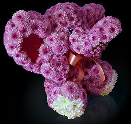 Милый слон из живых цветов