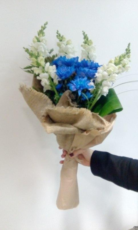 Ярко синяя хризантема и дельфиниум